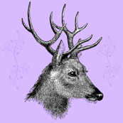 Stag_Head