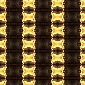 chocolate vanilla stripes
