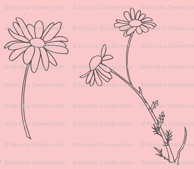 Daisies, drawing (dark gray on warm pink)