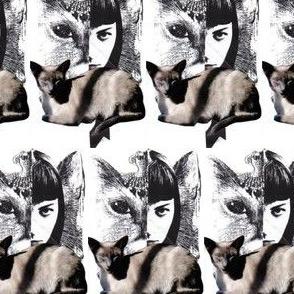 Cat & Girl <3 Siamese Twins