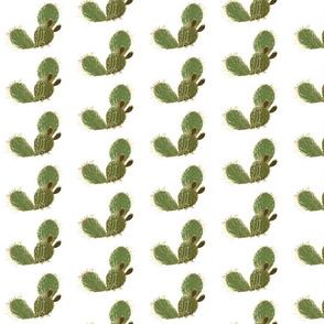 Gold green cactus