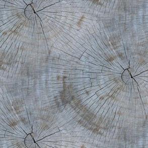 Tree Rings- natural