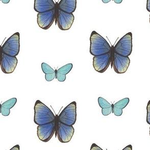 Blue Watercolor Butterflies