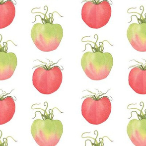 Watercolor Tomatoes