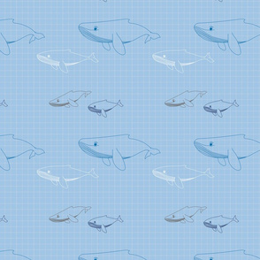 Whales-Big
