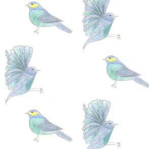Blue bird by Sara Aurora Waters