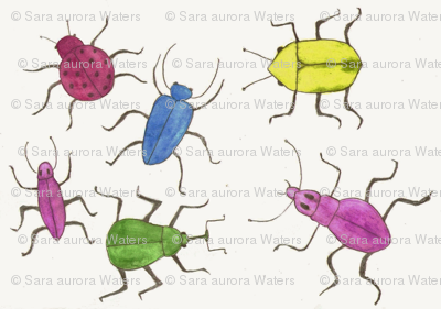 Multicolored bugs and beetles by Sara Aurora Waters
