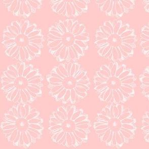 Cameo Pink Daisy
