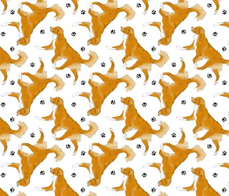 Trotting Nova Scotia Duck Tolling Retriever And Paw Prints  White