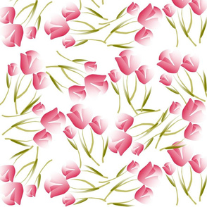 Romantic PInk Tulips