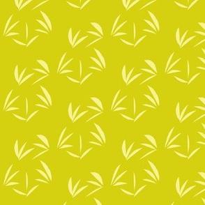 Buttery Yellow Tussocks on Bush Lemon