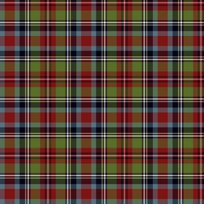 "Carolina states tartan, 3"" repeat"