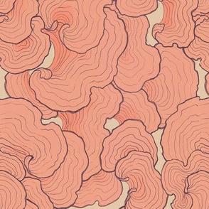 Tree Fungus