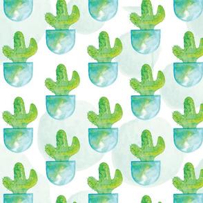 Forbidden Cactus