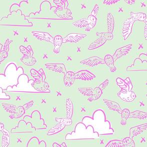 owls mint + pink