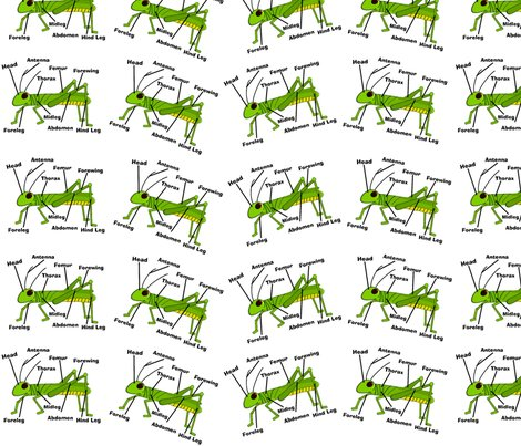 Grasshopper_fabric_ed_shop_preview