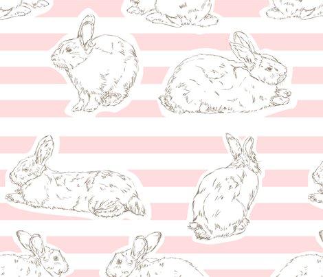 Pink-pattern-final-01_shop_preview