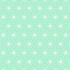Radiant Triangles Bamboo Coordinate mint and white