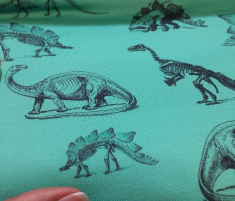 Dinosaur Skeletons | Teal and Black (rotated)