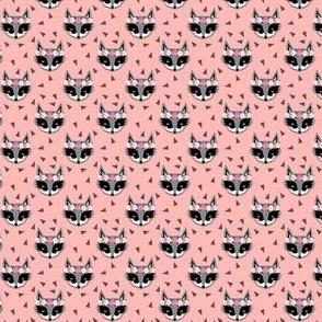 raccoon pink spring flower crowns cute animals