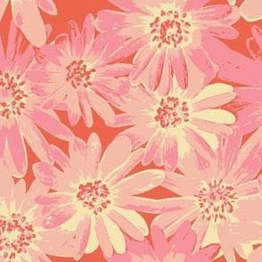 pink anenomes