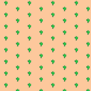 // Southwestern Desert //