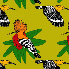 Hoopoe Flower Pattern
