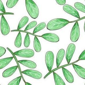 rounded leafy branches