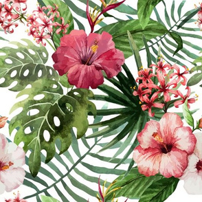 Topical Hawaii Watercolor Hibiscus Flowers Floral