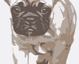 Rrfrenchie_kerstin_beige_stand_thumb