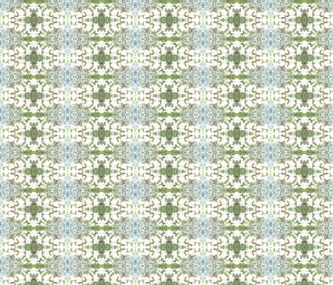 DSCN0189 fabric by ruthjohanna on Spoonflower - custom fabric