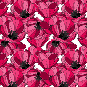 red pink tulips