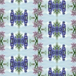 Muscari Dreams - Muscari and Redbud - half drop repeat