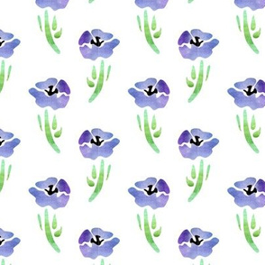 indigo poppies