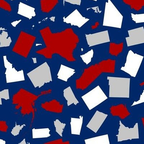 United States Scatter (Blue)