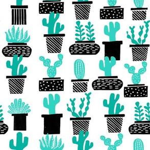 cactus // plant pots potted plants houseplants plants black and white cactus summer tropical