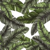 Rtropical_palm_leaves._seamless_pattern._vector_illustration-08__1__shop_thumb