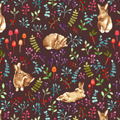 Forest bunnies