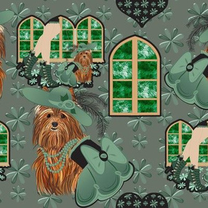 Yorkshire terrier -Yorkie - Tori's Take me to church