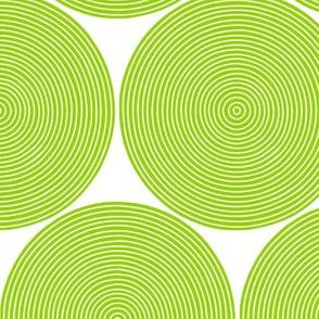 concentric circles in parakeet green