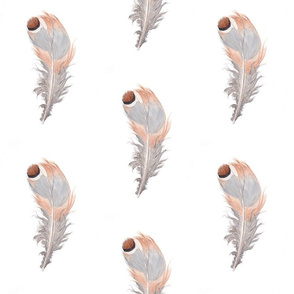 spotted_feather