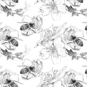 bees and blossoms