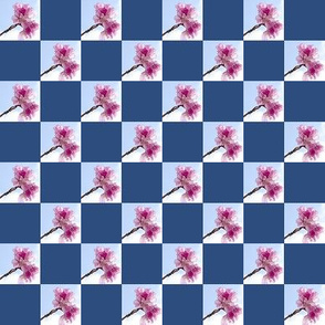 Blossom   1 inch check
