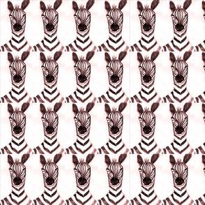 Zebrapanel3