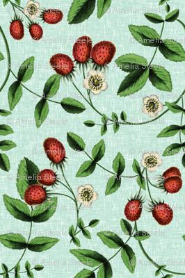 Berry Summer / Sky