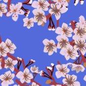 Rcherry_blosson_sky_shop_thumb