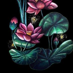 lotus pond at night