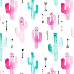 Watercolors cactus garden indian summer arrows blue pink