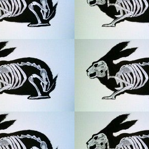 Xray Bunny