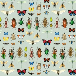 The Usual Suspects - insects on grey - small